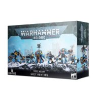Space Wolves Pack Graumähnen
