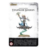 Disciples of Tzeentch: Tzaangor Shaman